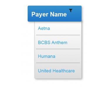 Payer Name